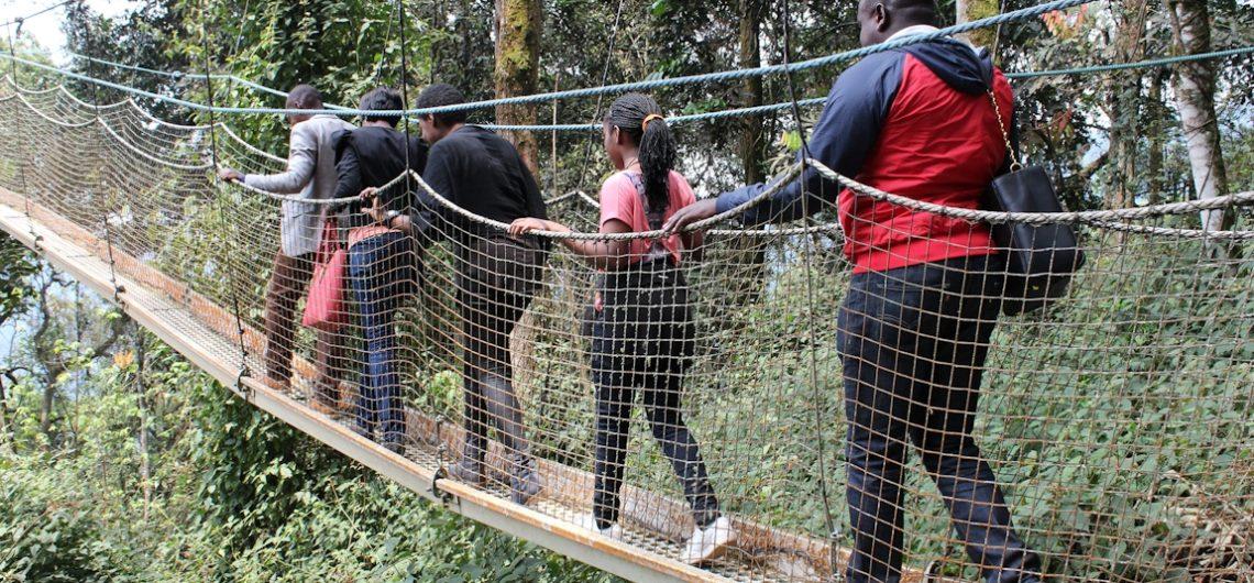 Nyungwe-canopy-walk-rwanda