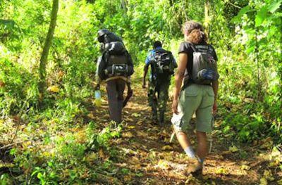 Budget-Uganda-Safaris